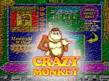 Игровые автоматы Crazy Monkey играть бесплатно